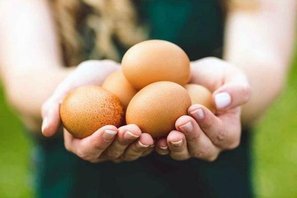 Яйця вважаються одним з найбільш ефективних продуктів, що знижують апетит.