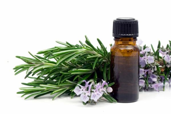 Евкаліптова олія - ще один корисний народний засіб для позбавлення від неприємного запаху з рота