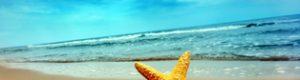 Користь відпочинку на морі